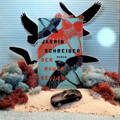 Der Mauersegler I Jasmin Schreiber